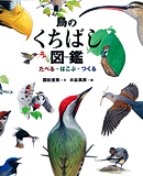 鳥のくちばし図鑑